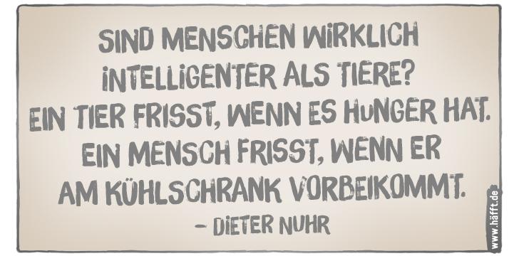 6 Häfftige Sprüche Von Dieter Nuhr Häfftde