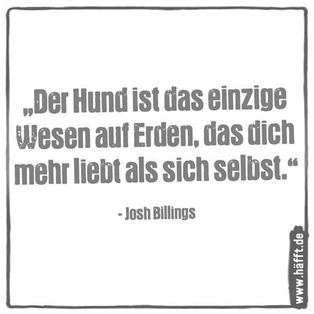 8 schöne Zitate über Hunde · Häfft.de