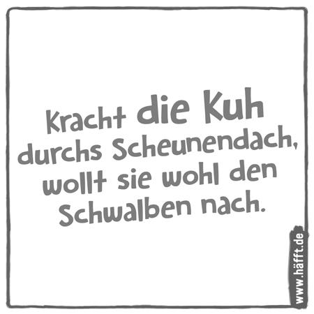 Die 7 kuhlsten Sprüche & Witze mit Kühen · Häfft.de